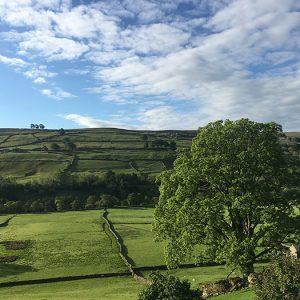 Shepherds Hut View